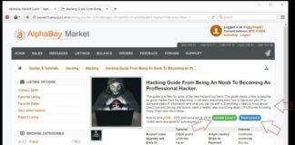 AlphaBay Shut Down After Police Raid